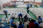 Kiên Giang hỗ trợ các địa phương phía Nam chống dịch