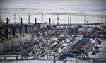 Châu Âu: Giá khí đốt giảm sau thông tin về Gazprom