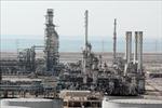 Saudia Arabia sẽ không tái áp đặt lệnh cấm vận dầu mỏ