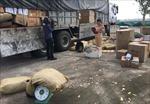 Bắt ô tô tải vận chuyển trên 1,2 tấn thịt động vật bốc mùi hôi thối