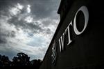 Các bộ trưởng thương mại từ hàng chục nước họp tại Canada bàn về cải cách WTO