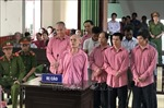 Tuyên phạt 9 bị cáo 81 năm tù trong vụ 'xóa sổ' rừng ở Bình Định