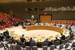 Việt Nam kêu gọi tiếp tục cải tổ hệ thống phát triển Liên hợp quốc