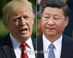 Tổng thống Donald Trump: Chủ tịch Trung Quốc sớm thăm Mỹ