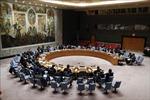 Không đạt được thoả thuận nào trong cuộc họp kín về bạo lực leo thang Dải Gaza