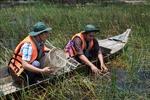 Hướng đi cho du lịch nông nghiệp, sinh thái ở ĐBSCL - Bài 2: Còn nhiều nút thắt