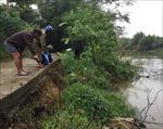 Bờ sông Bồ sạt lở nghiêm trọng, hàng trăm hộ dân bị ảnh hưởng