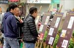 Triển lãm giải biếm họa báo chí Việt Nam - Cúp Rồng tre