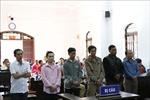 Xét xử 6 bị cáo trong vụ hủy hoại 6,4 ha rừng tại Đắk Nông