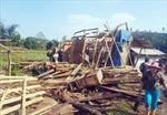 Dông lốc gây thiệt hại hơn 500 ngôi nhà tại Bảo Yên, Lào Cai