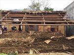 Dông lốc gây thiệt hai nặng nề nhiều nơi ở Hà Giang