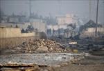 Xe cài bom phát nổ, ít nhất 5 người Afghanistan thương vong