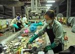Xây dựng Đề án tổng thể quản lý chất thải rắn
