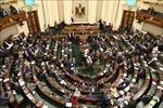 Bắt đầu bỏ phiếu trưng cầu ý dân về sửa đổi hiến pháp Ai Cập