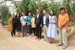 Tu nghiệp sinh nông nghiệp Việt Nam tại Israel - Bài 2: Học hỏi và khám phá