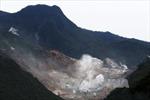 Nhật Bản nâng cảnh báo về hoạt động của núi lửa Hakone