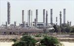Giá dầu châu Á tăng 1% sau 'tiết lộ' của Bộ trưởng Năng lượng Saudi Arabia