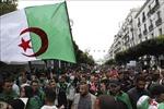 Đụng độ giữa cảnh sát và người biểu tình tại thủ đô Algiers