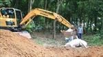 Các địa phương khảo sát, kiểm soát chặt vùng dịch tả lợn châu Phi