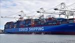 Phòng Thương mại Mỹ cảnh báo hậu quả tăng thuế đối với hàng hóa Trung Quốc