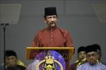 Điện mừng nhân ngày sinh Quốc vương Brunei