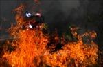 Australia đối mặt nguy cơ cháy rừng nghiêm trọng hơn