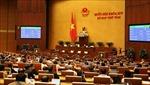 Quốc hội thông qua Bộ luật Lao động (sửa đổi) nâng tuổi nghỉ hưu