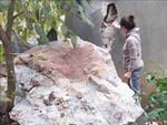 Cuộc sống người dân xã Đàm Thủy đảo lộn sau nhiều trận động đất liên tiếp