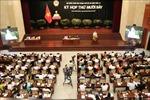 HĐND Thành phố Hồ Chí Minh thảo luận nhiều nội dung quan trọng