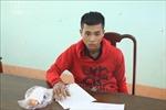 Bắt đối tượng đốt nhà nghỉ Thanh Thanh tại Bình Phước