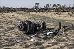 Rơi máy bay trinh sát tại Thổ Nhĩ Kỳ, nhiều người tử nạn