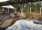Triển khai giải pháp cấp bách phòng, chống hạn hán, thiếu nước, xâm nhập mặn