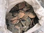 Malaysia thu giữ hơn 6 tấn vảy tê tê