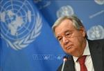 HĐBA thảo luận về bảo vệ thường dân trong xung đột vũ trang