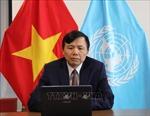 Việt Nam đồng tổ chức Thảo luận về Bảo vệ môi trường trong xung đột vũ trang