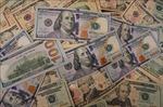 Sáng 2/7, tỷ giá trung tâm giảm 10 đồng