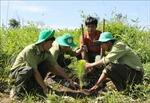 Ngăn chặn đà suy giảm đa dạng sinh học ở Việt Nam - Bài 2: Hoàn thiện hệ thống pháp luật về đa dạng sinh học