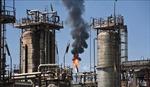 Giá dầu WTI giảm 0,3%, dầu Brent tăng 1% trong tuần qua