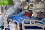 Bệnh nhân mắc COVID-19 nặng có thể sản sinh kháng thể nhanh hơn