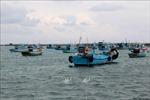 Ngăn chặn tàu cá vi phạm khai thác vùng biển nước ngoài