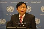 Việt Nam lên án hành vi bạo lực trong xung đột leo thang Israel - Palestine