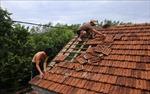 Điện thăm hỏi các tỉnh bị thiệt hại do bão số 5