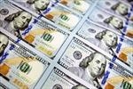 IIF: Đầu tư vào thị trường mới nổi đạt mức cao kỷ lục hơn 76 tỷ USD