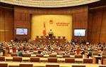 Ngày làm việc đầu tiên của Kỳ họp thứ 10, Quốc hội khóa XIV
