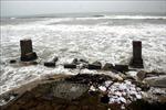 WB đề xuất các giải pháp ứng phó thiên tai tại các vùng ven biển Việt Nam