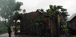 Bão số 9 gây thiệt hại lớn tại tỉnh Gia Lai