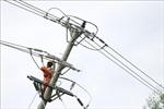 Khắc phục sự cố, cấp điện lại cho 100% khách hàng tại Phú Yên sau bão số 9