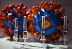 WHO: Bảo đảm phân phối công bằng vaccine ngừa COVID-19