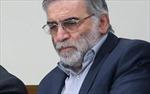 Nhà khoa học hạt nhân hàng đầu của Iran bị ám sát tử vong