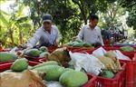 Tạo động lực mới cho phát triển nông nghiệp